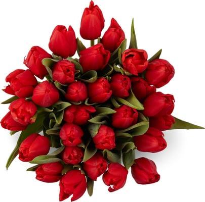 M-Classic Tulpen 30 Stück