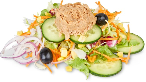 Migros Daily Saladbowl Thon
