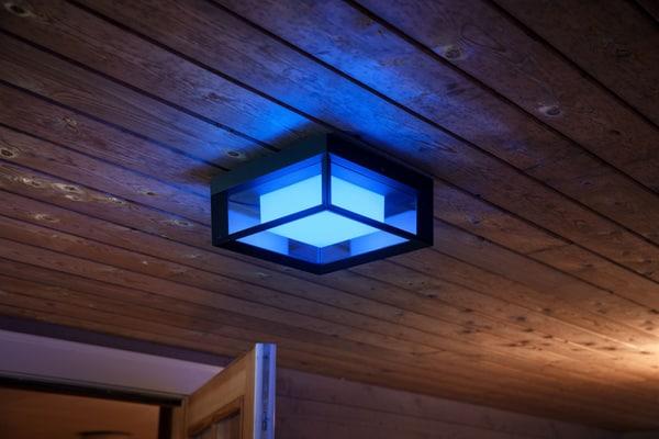 Philips hue Outdoor Impress Lampada da parete per esterno