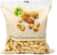 Cacahuètes Bio