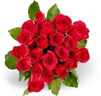Toutes les mini-roses Fairtrade