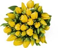 Tulipani, mazzo da 30