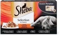 Sheba selezione in Salsa composizione