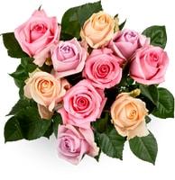 Roses romantiques Fairtrade, le bouquet de 10