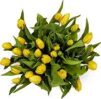 Tulipes, le bouquet de 25
