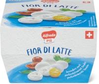 Alfredo Più Mozzarella Fior di Latte