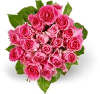 Toutes les mini-roses Fairtrade, le bouquet de 20