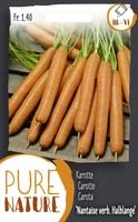 Do it + Garden Carotte 'Rouge Nantaise améliorée' mi-hâ Semences de legumes