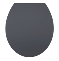 diaqua WC-Sitz Hollywood Grey Slow-Motion