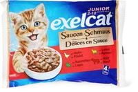 Exelcat Sauce Junior