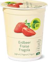 Tutti gli yogurt bio