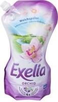 Exelia Orchid