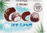 Pralinés coco Ice-Land