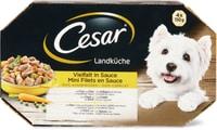 Cesar Landküche Pute und Rind