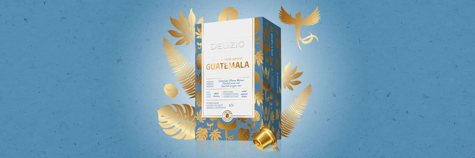 Delizio Guatemala