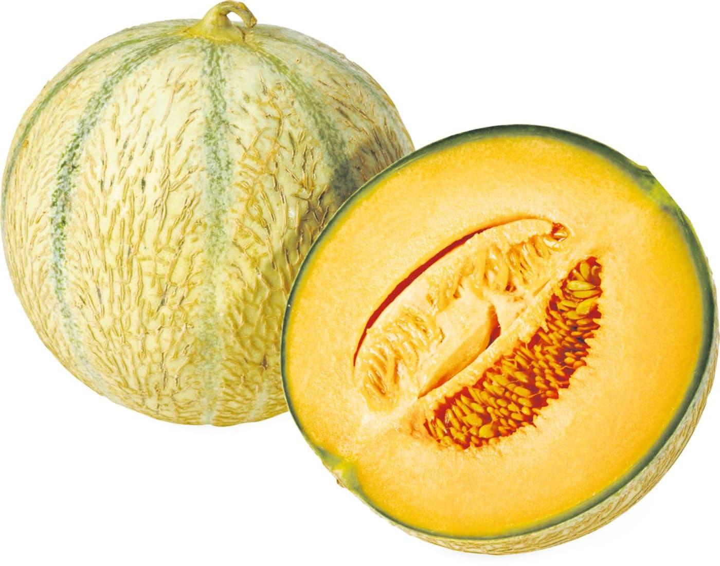 Melone charentais migros for Melone charentais