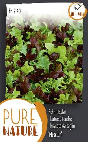 Schnittsalat 'Mesclun' Salatmischung 5g