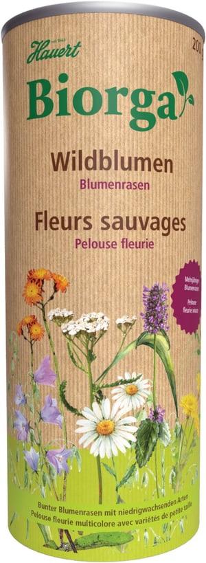 Biorga Blumenrasen, 0,2 Kg