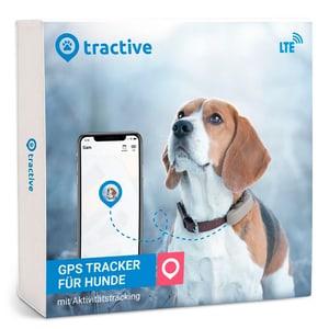 Traceur GPS de traction pour chiens avec suivi d'activité et dernière technologie LTE