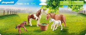 70682 Famiglia di pony
