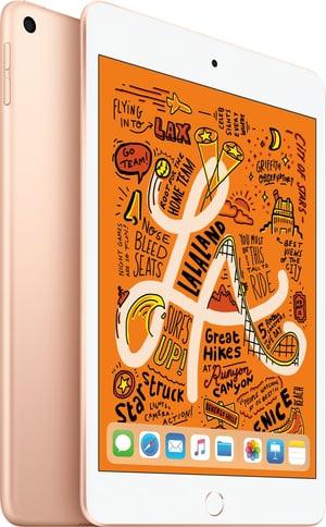 iPad mini 7.9 WiFi 256GB gold