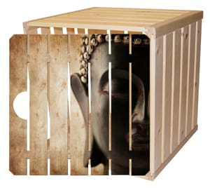 Harasse en bois avec porte A1/2 bouddha