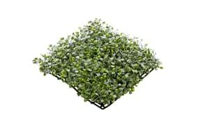 Künstlicher Buxusteppich grün
