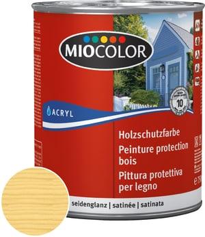 Acryl Glacis bois Incolore 750 ml