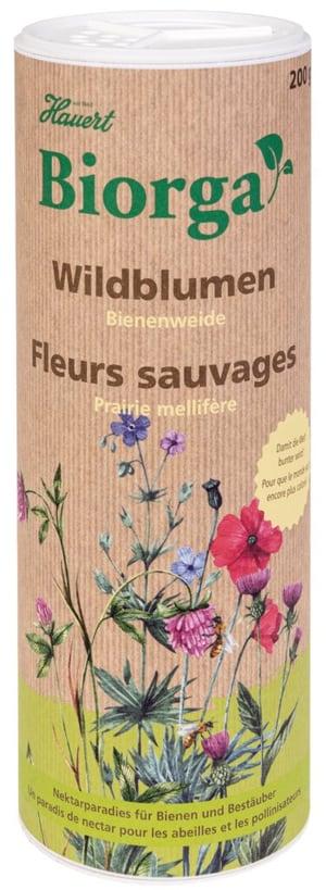 Biorga Wildblumen Bienenweide