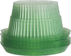 Protezioni antilumache ad anello 12 cm, 6 pezzi
