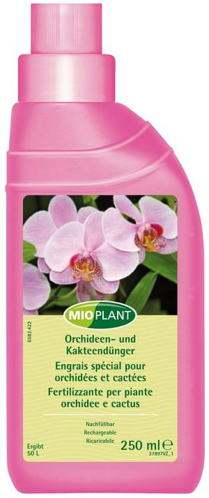 Orchideen- und Kakteendünger, 250 ml