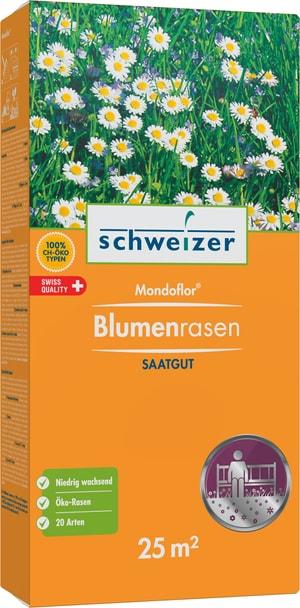 Mondoflor Blumenrasen, 25 m2