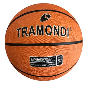 Basketball Nr.7