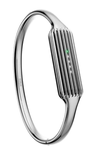 Flex 2 braccialetto argento large