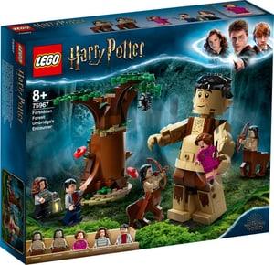 Harry Potter™ La Forêt interdite : la rencontre d'Ombrage 75967