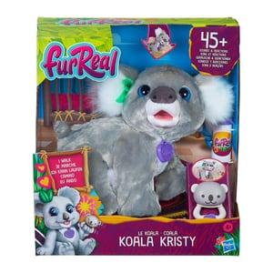 Koala Kristy