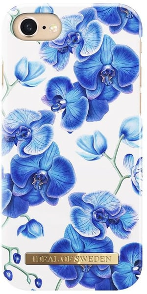 Back Cover Baby Blue Orchid