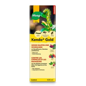 Kendo Gold, 500 ml