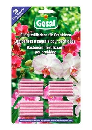 Engrais bâtonnets pour orchidées, 20 bâtonnets