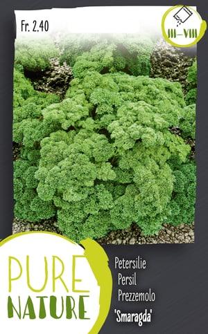 Petersilie 'Smaragda' dunkelgrün 5g