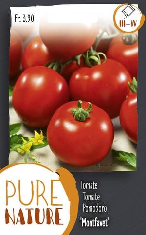 Tomate 'Montfavet' 30 Korn