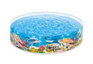 Deep blue Sea Snapse Pool