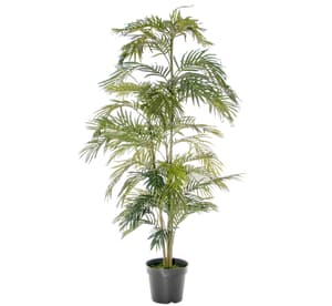 Kunstpflanze Areca Palme