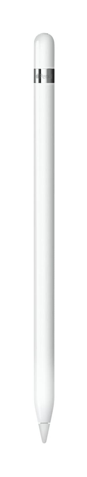 iPad Pencil (1. Generation)