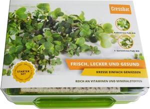 Cresspads Box vert