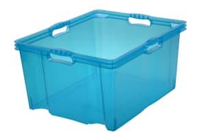 Multi Box XXL Franz