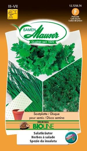 Disco per seminare delle erbe d'insalata bio