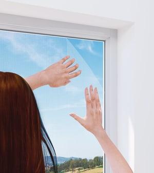 Fenster RHINO
