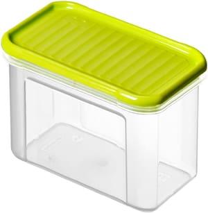 DOMINO Vorratsdose 0.75l mit Deckel, Kunststoff (PP) BPA-frei, transparent/grün