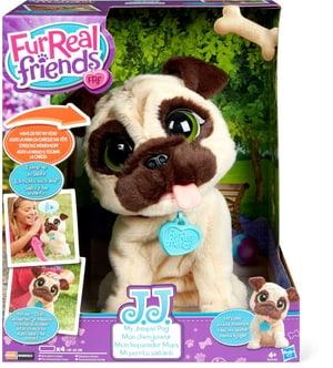 Friends JJ, mon chien joueur